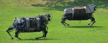 LS3, Alpha Dog, Robo-Mule